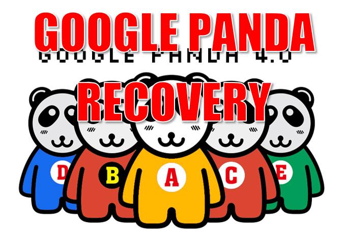 Google Panda Recovery