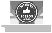 10seos-top-10-seo-companies-us-2